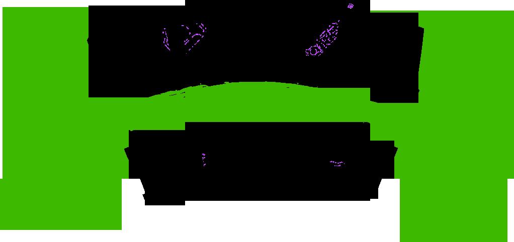 Strefa Ruchu logo